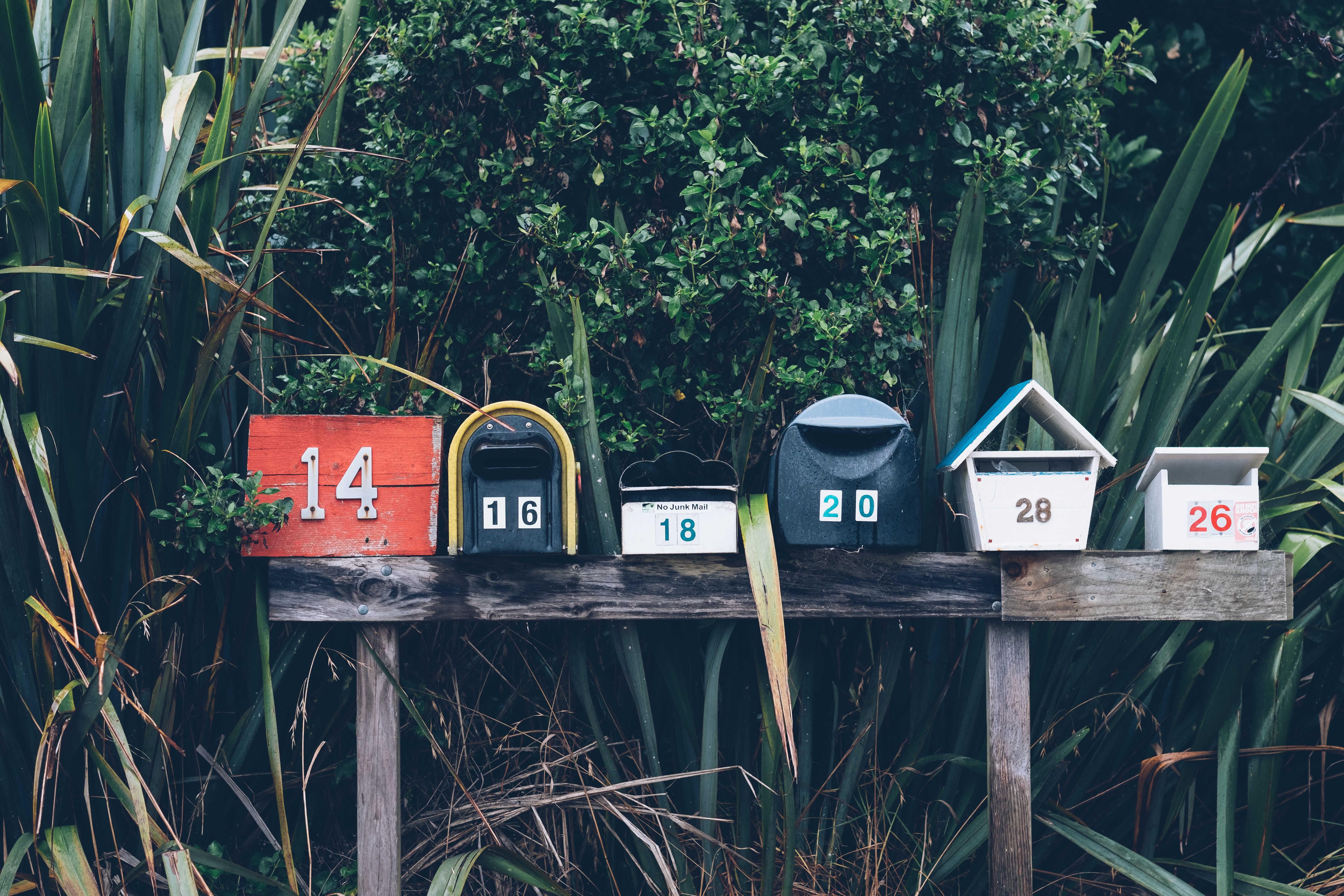 Jak zintegrować MailChimp z Mautic? Poznaj plugin MailChimp-Mautic